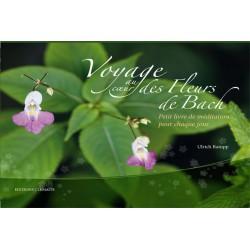 Voyage au coeur des Fleurs de Bach klessentiel.com
