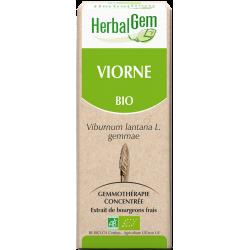 Viorne - Herbalgem - klessentiel.com