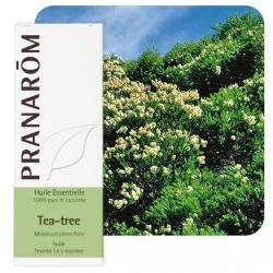 Tea Tree - Pranarom klessentiel.com