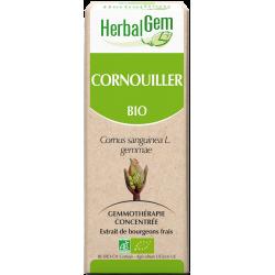 bourgeon de cornouiller- herbalgem - klessentiel.com