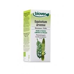 Prêle / Equisetum arvense Biover klessentiel.com
