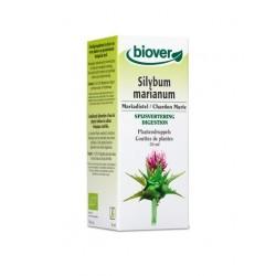 Chardon Marie / Silybum marianum Biover klessentiel.com