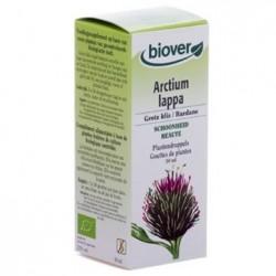 Bardane / Arctium lappa Biover klessentiel.com